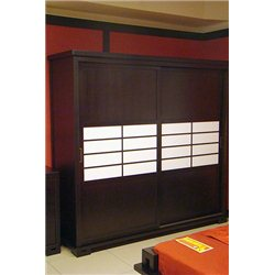 Шкаф-купе Япония 2-дверный